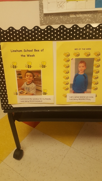bees of the week